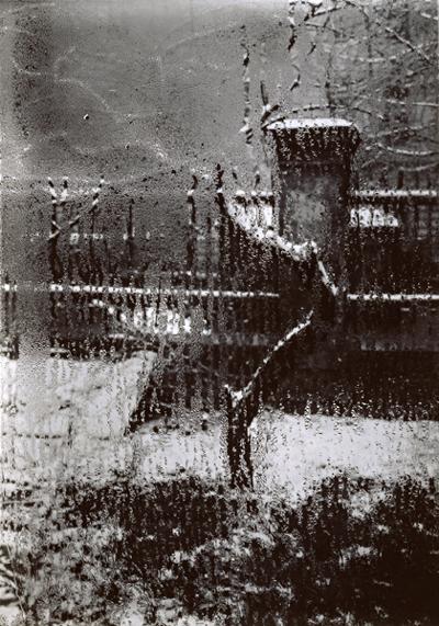 josef-sudek-son-jardin-fenetre-1948