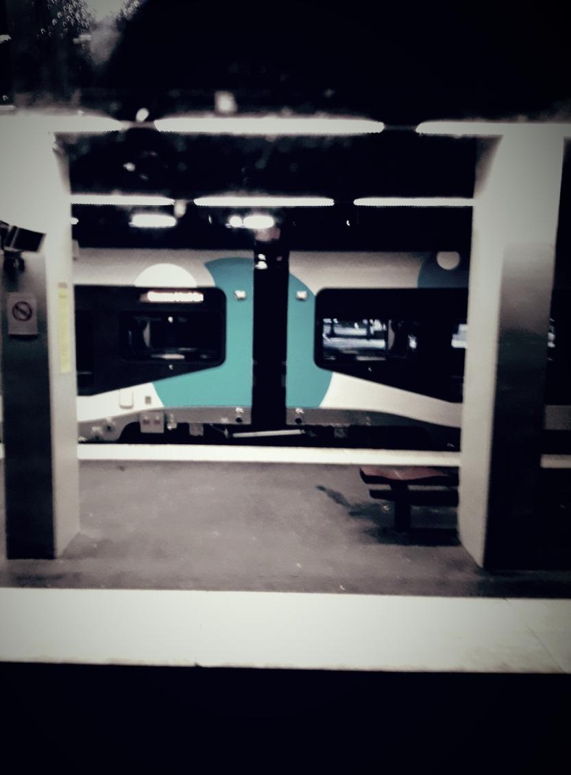 train rouen mars 2018 IPL